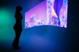 Immersive VR 360 Video